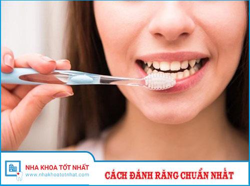 Hướng Dẫn Cách Đánh Răng Chuẩn Nhất Hiện Nay